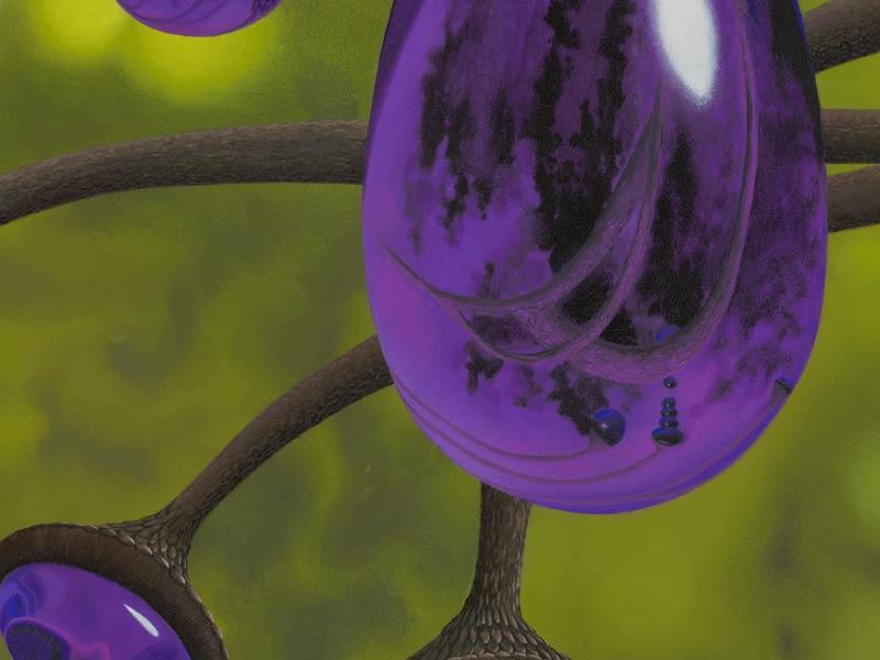 Detail Cyphomandra Vitra purple glass