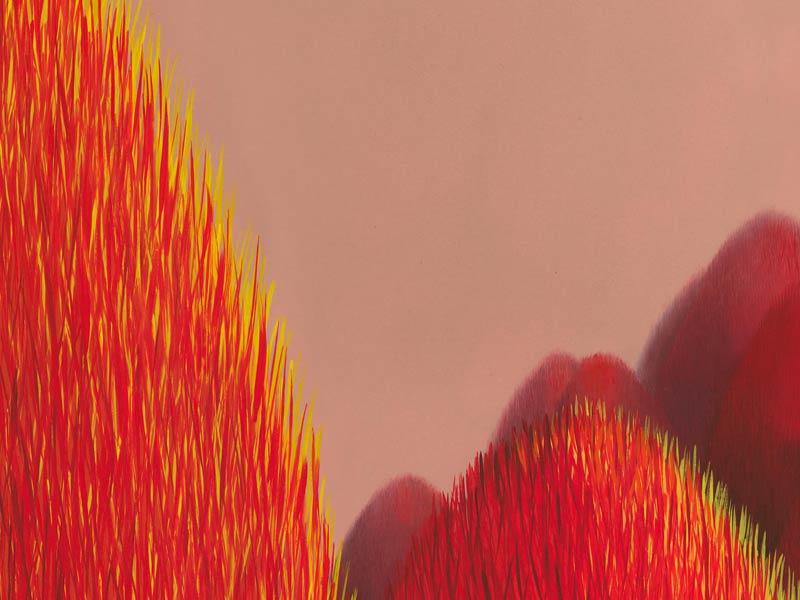 Detail Populus Flucta